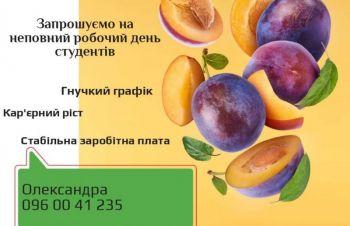 Касир-студент, супермаркет «Сільпо», вул. Чарівна, 74, Запорожье