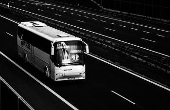 Польська фірма працевлаштує водіїв категорії Д, автомеханік, Сумы