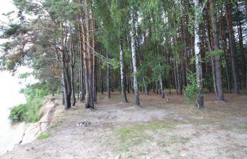 Продам участок Вышгородский ра н с.Ясногородка 16 га