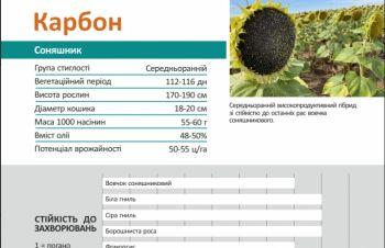 КАРБОН гибрид подсолнечника (Семена подсолнечника Карбон), Киев